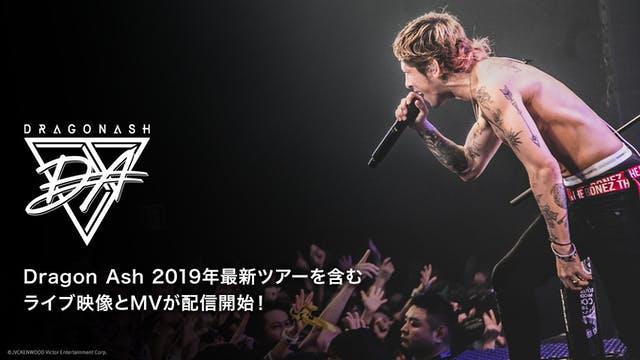 Dragon Ash ライブ映像 おすすめ
