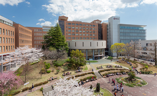 桜美林大学の卒業