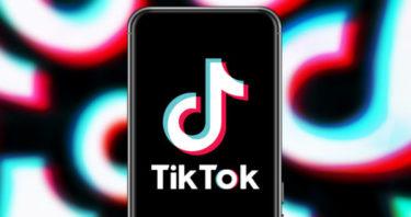結論ティックトック (TikTok)で収益は得られる?収入や稼ぎに繋げる方法
